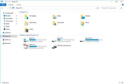 HDD Festplatte mit 'Data' und 'Recover' Partition