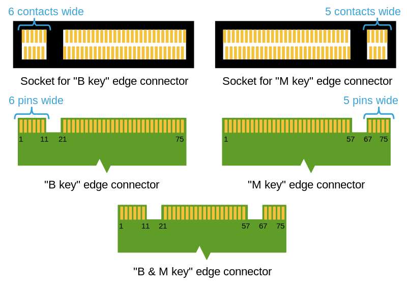 M2_Edge_Connector_Keying_800px.png