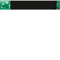 logo_consors_200x200_v2.png