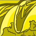 dutchbarnie